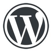 WordPress medallion small - Plans de mise-à-jour